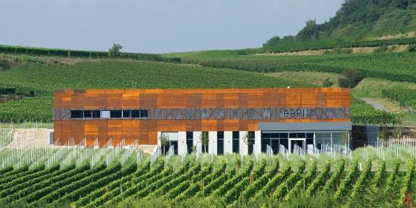 Im Kaiserstuhl warten einige moderne und architektonisch reizvolle Winzerbetriebe