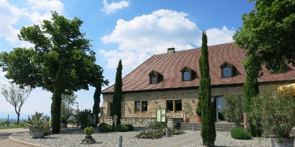Vom Staatsweingut Freiburg auf dem Blankenhornsberg bei Ihringen hat man eine herrliche Aussicht