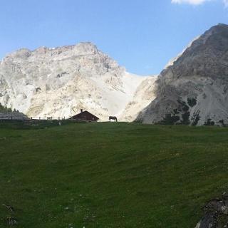 Alp Sesvenna