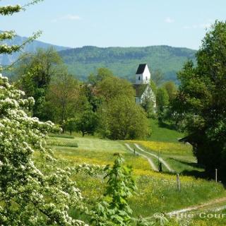 Fernwanderweg - Meditationsweg, 4. Etappe - Blick auf St. Blasius