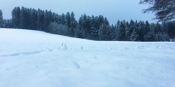 Schneefeld bei den Windrädern