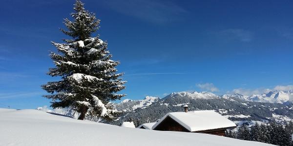Winterlandschaft auf Matschwitz