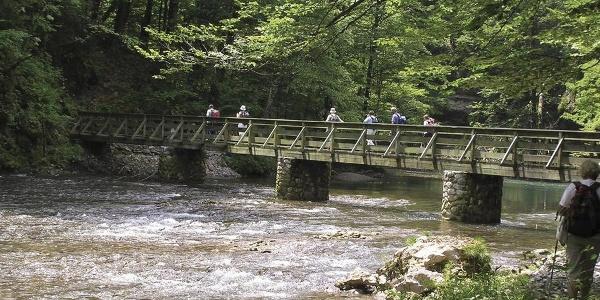 Most kod izvora Kupe