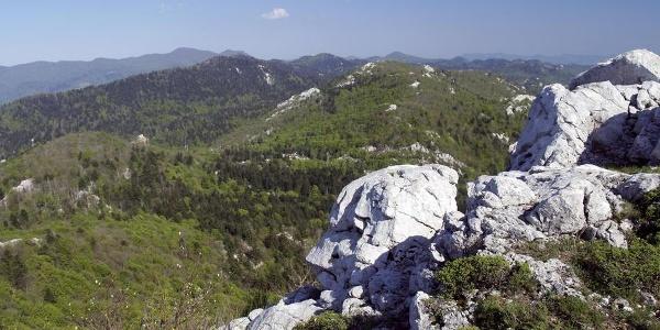 Kobiljak i Viševica s Medviđaka