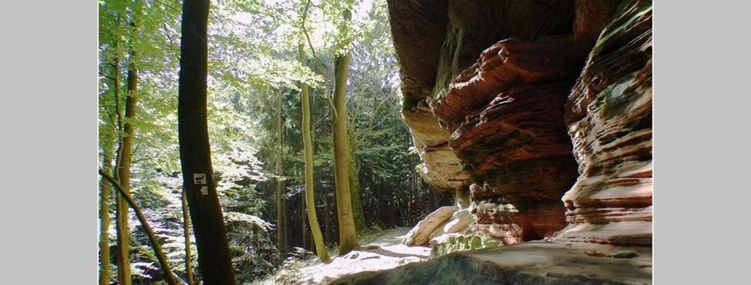 Spuren im Sandstein