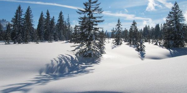 Winterlandschaft Riefensberg