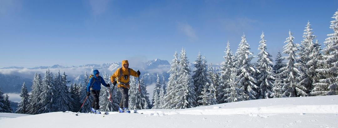 Skitour - Hinteres Hörnle