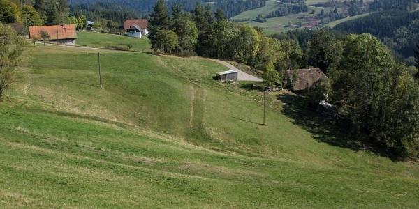 Blick vom Mittelberg
