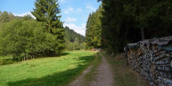 Eingang ins Eichbachtal