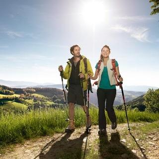 Wandern am WAB bei Thernberg