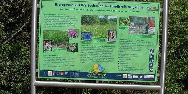 Infotafel zum Biotopverbund Wertachauen