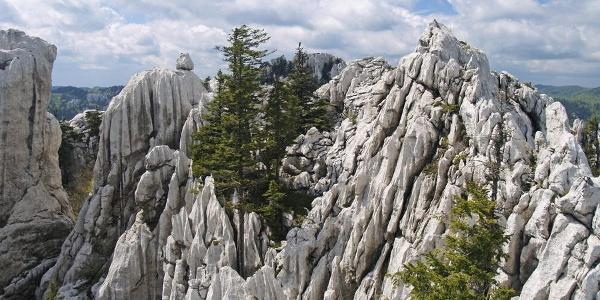 Biskupova kapa u Bijelim stijenama