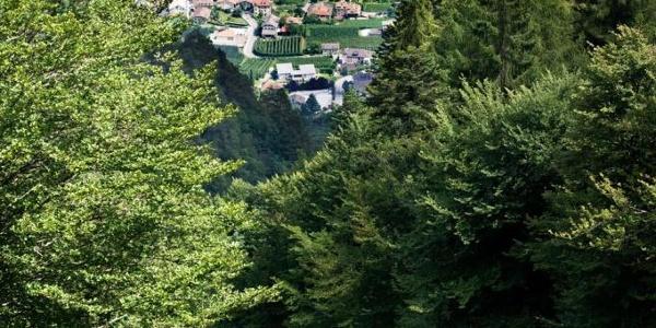 Ausblick von der Bergstation der Mendelbahn