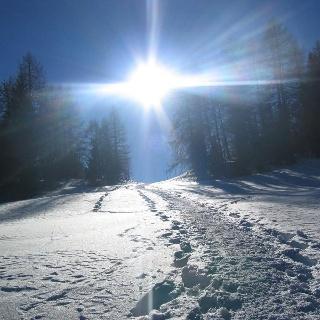 Schneeschuhwandern in Mölten