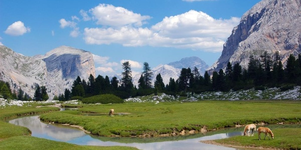 Naturpark Fanes - Sennes - Prags, Alta Badia