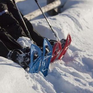 Snoweshoehike to the Lyfi alp