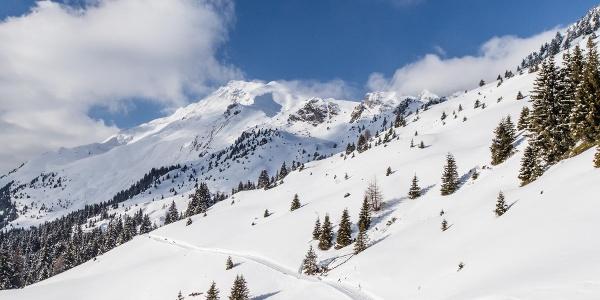 Monte Cavallo Escursione invernale alla malga Kuhalm