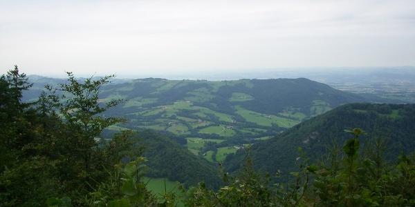 Ginselhöhe
