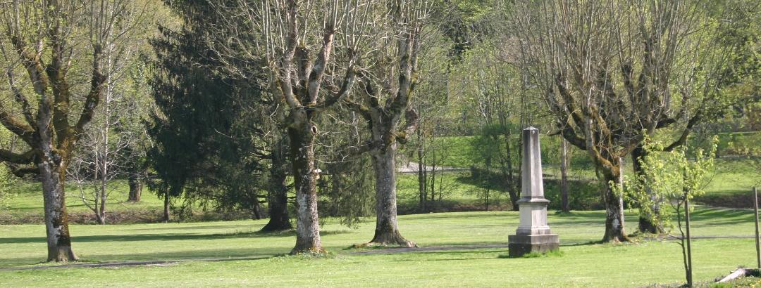 Kurpark im Frühling