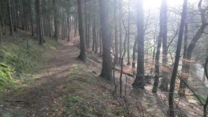 Der Pilgerweg Loccum-Volkenroda entlang der Nieme