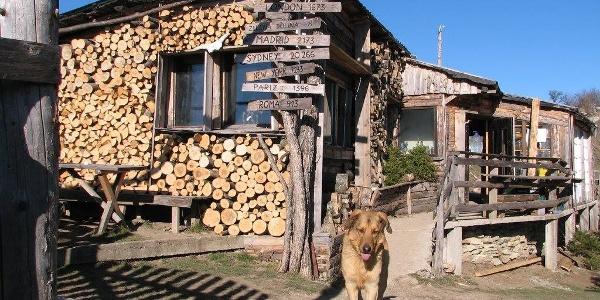 Watchdog ;)