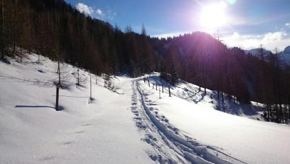 Die letzten Meter zur Bergstation des früheren Schleppliftes