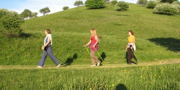 Persone che passeggiano sul percorso Celado