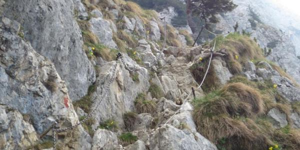 Klettereinlage hinterm Säulinghaus