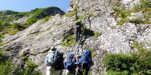 Leiter im Aufstieg