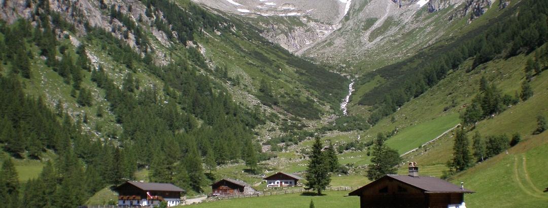 Wollbachalm im Wollbachtal
