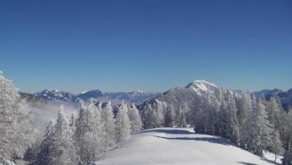 Gipfelwiese mit Blick zum Maiereck