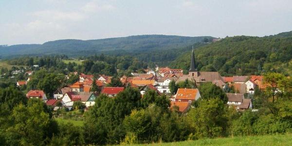Blick über Neustadt im Harz