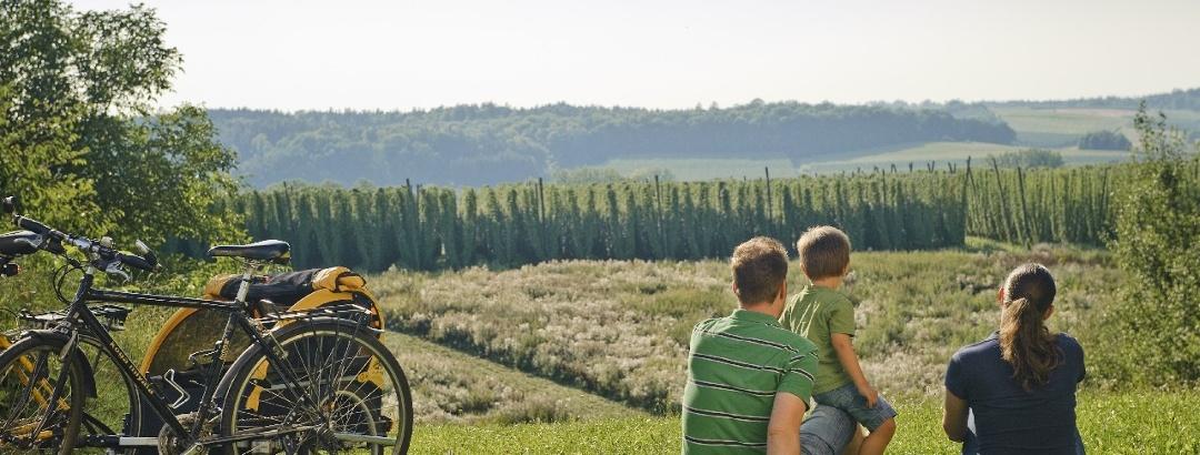 Rast im Hügelland der Hallertau