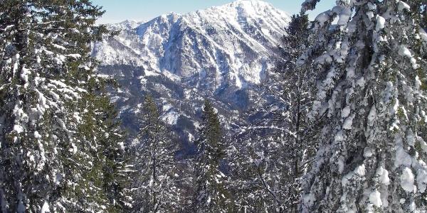beim Aufstieg: Blick zum Dürrenstein