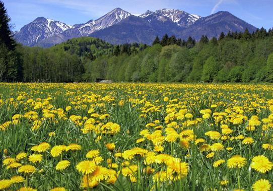 Natur und Ausflugsziele im Chiemgau