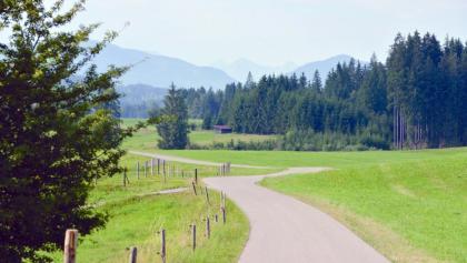 Radweg auf dem 4. Abschnitt der Schlossparkradrunde
