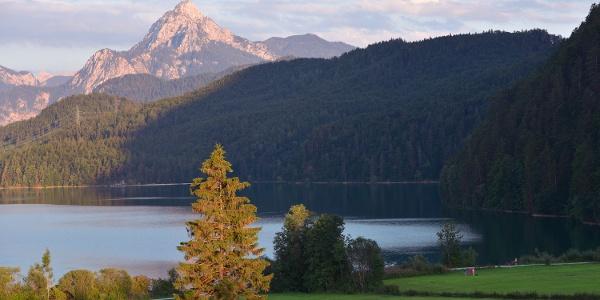 Die Seenlandschaft im Schlosspark