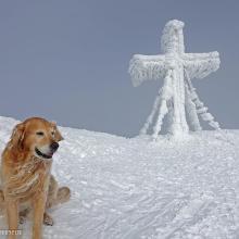 Ein Gipfelkreuz aus Zuckerguss ;-)