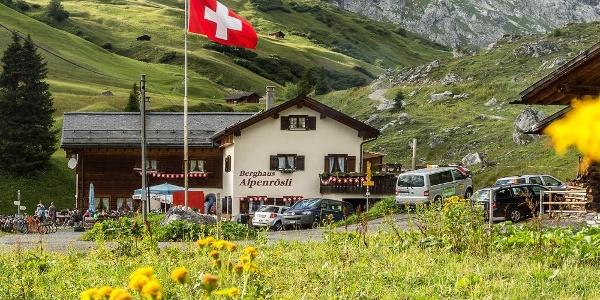 Alpenrösli im Sommer