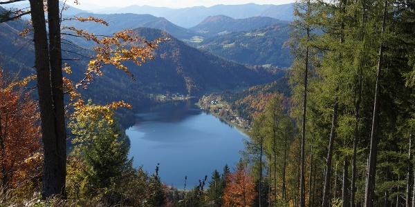 Blick auf den Lunzer See