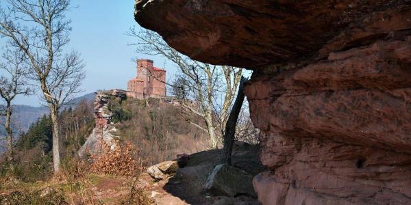 Blick von Ruine Anebos auf Burg Trifels