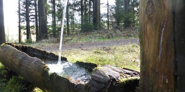 Brunnen kurz nach Steegen