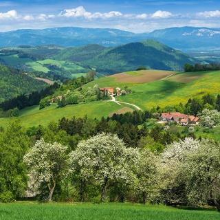 Thomasberg im Land der 1000 Hügel