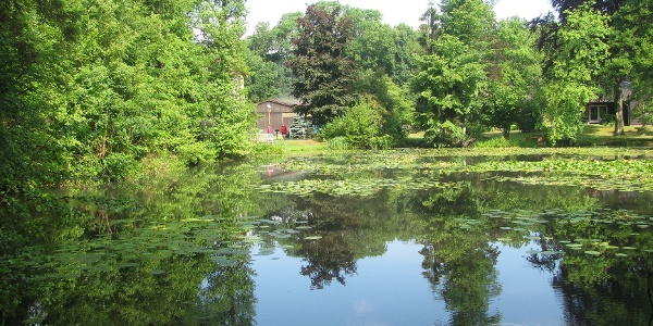 Teich in den Nähe der Rutenmühle