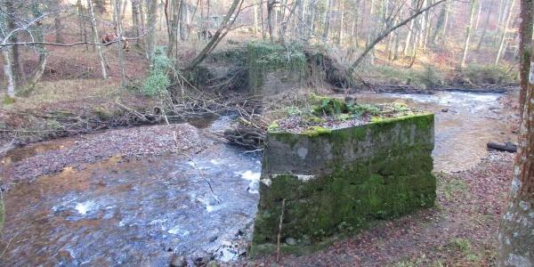 Brückenpfeiler Waldbahn