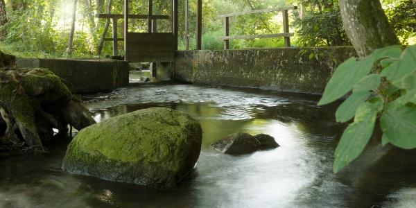 BAROCK entspannen am Stillen Bach bei Weingarten