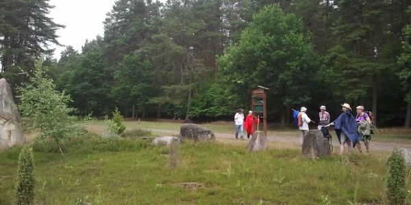 Steingarten zwischen Neuenkirchen und Falshorn