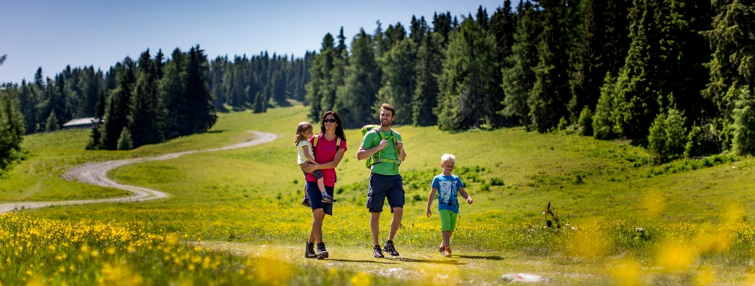 Hiking in Styria