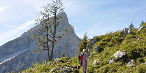 """Die """"Watzmannfrau"""" beim Aufstieg auf das Watzmannhaus"""