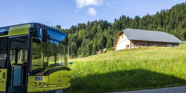 Bushaltestelle beim der Alpe Heumöser, Dornbirn-Ebnit
